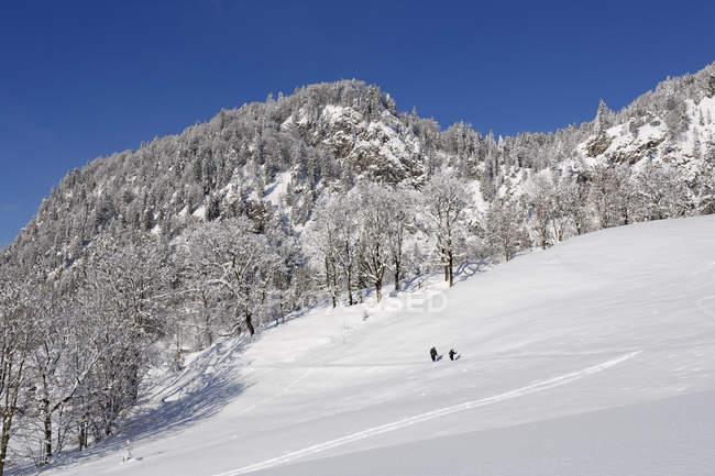 Germania, Baviera, Alta Baviera, Chiemgau, vicino a Reit im Winkl, escursionisti in inverno contro la roccia — Foto stock