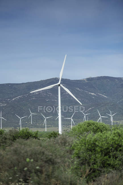 Spain, Andalusia, Tarifa, Wind turbines — Stock Photo