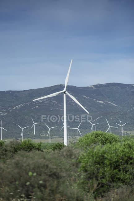Espanha, Andaluzia, Tarifa, turbinas eólicas — Fotografia de Stock