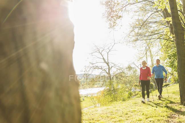 Pareja madura de Alemania, Mannheim, Nordic walking en el Parque - foto de stock