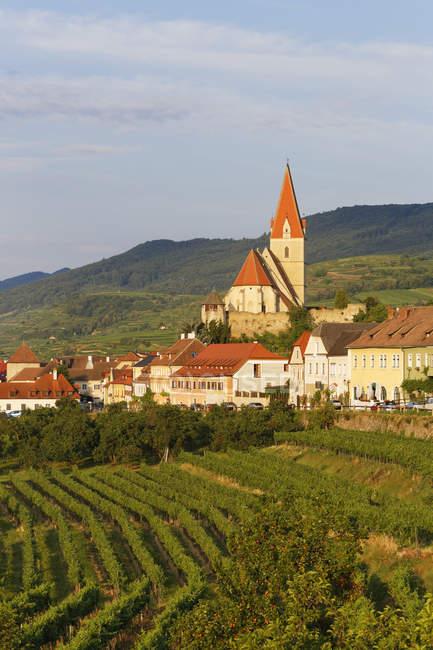 Австрия, Lower Austria, Вид на маленький городок и зеленое газонное поле — стоковое фото