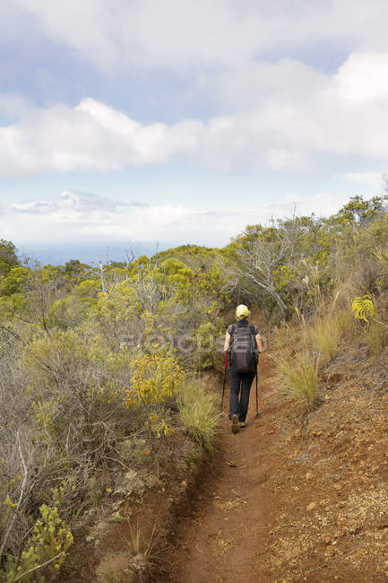USA, Hawaii, Woman walking through trail — Stock Photo