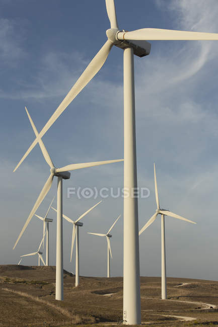 Spain, Andalusia, Cadiz, wind turbines standing on a field — Stock Photo