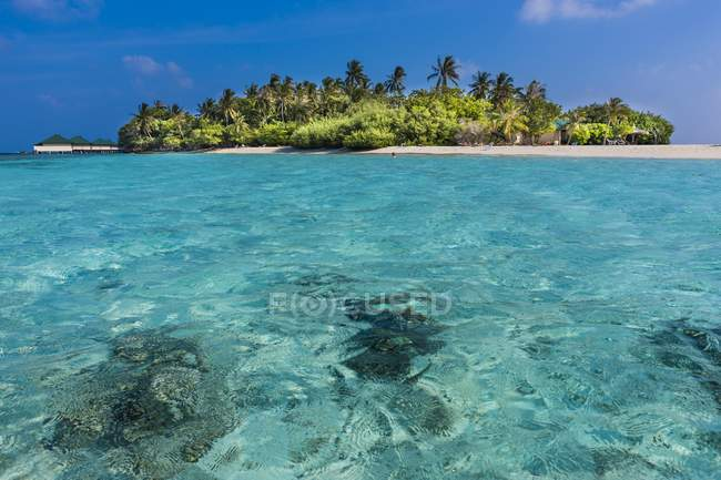 Maledives, Atoll-Sud-Homme, Embudu, île — Photo de stock