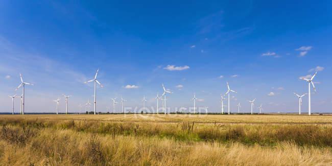 Allemagne, Saxe-Anhalt, Boerde de Magdebourg, Champ de chaume et parc éolien en arrière-plan — Photo de stock