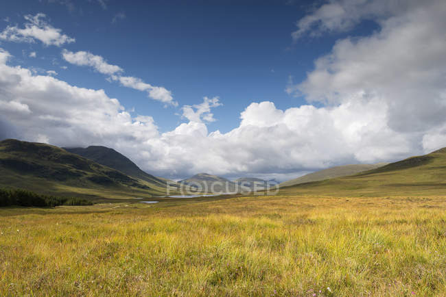 United Kingdom, Scotland, Ross and Cromarty district, View over heathland in the nothwest Highlands — Stock Photo