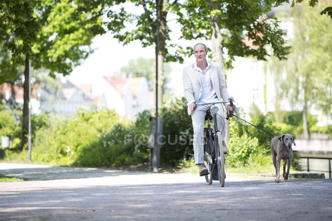 Mature man riding bicycle with Weimaraner dog, smiling — Stock Photo