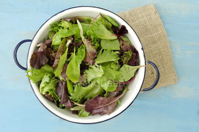 Ensalada mixta de hojas en maceta sobre madera azul con trozo de saco - foto de stock