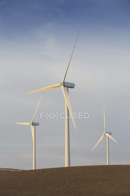 Spain, Andalusia, Cadiz, three wind turbines standing on a field — Stock Photo