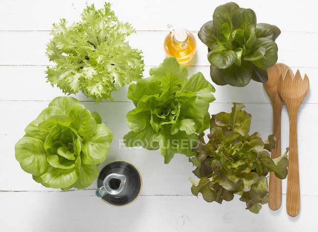 Vue du dessus des têtes de grappes de salade de laitue, huile d'olive et vinaigre balsamique en bouteilles de verre sur fond blanc — Photo de stock