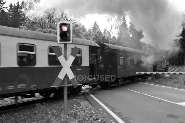 Germany, Saxony-Anhalt, Harz Railway, black and white — Stock Photo