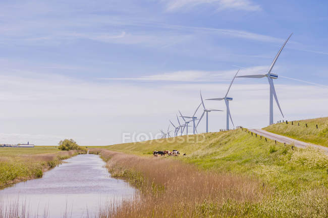 Germany, Schleswig-Holstein, View of wind turbine in fields  during daytime — Stock Photo