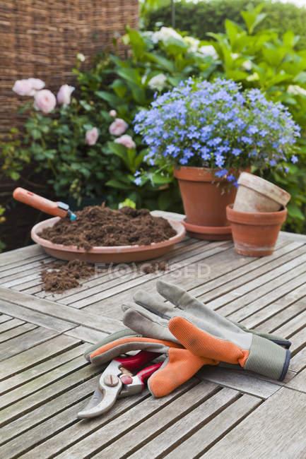 Équipement de jardinage sur table en bois à l'extérieur — Photo de stock