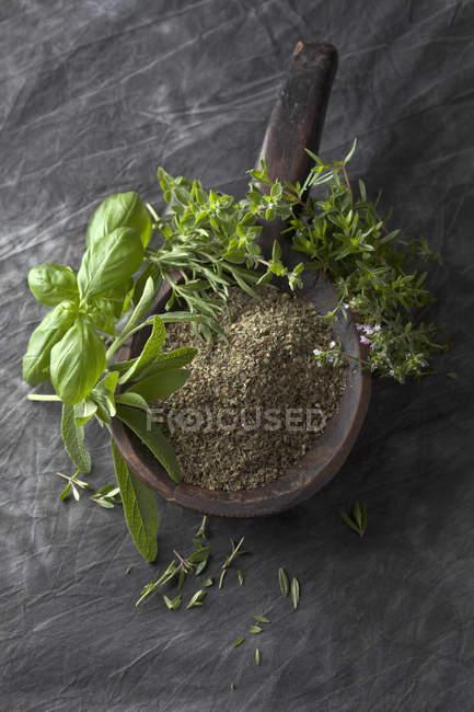 Variété d'herbes et de poudre dans une cuillère en bois, gros plan — Photo de stock