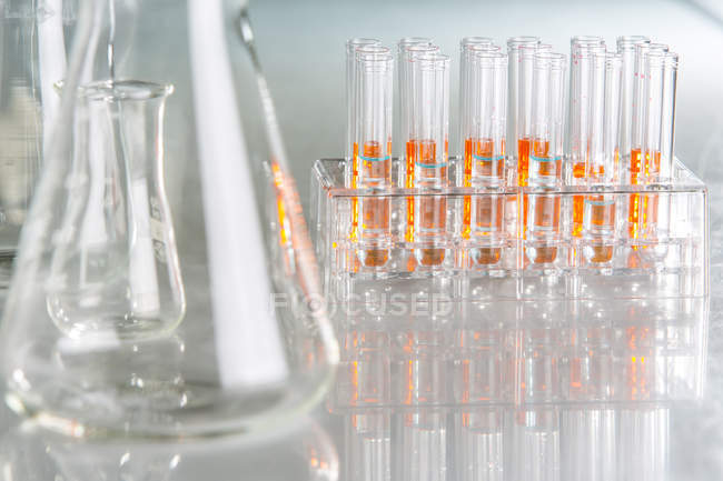 Laboratory glassware with liquids — Stock Photo