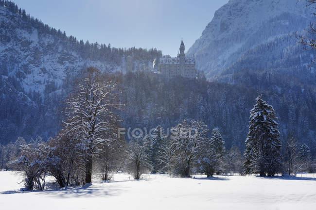 Германия, Бавария, вид замок Нойшванштайн на снегу — стоковое фото