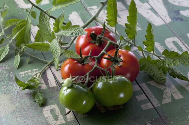 Свіжі взяв зелені та червоні помідори на дерев'яні поверхні — стокове фото