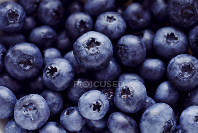 Close-up of fresh ripe blueberries in heap — Stock Photo