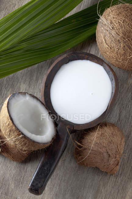 Cocos enteros y cortados a la mitad con leche de coco en superficie de madera con hoja - foto de stock