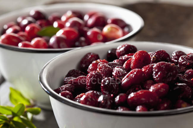 Bowls of dried and fresh cranberries, close up — Stock Photo