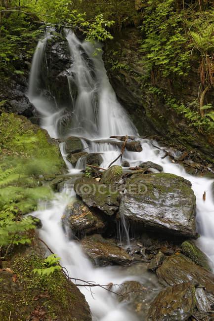 Австрия, Штирия, Вид на водопад в долине Энса — стоковое фото