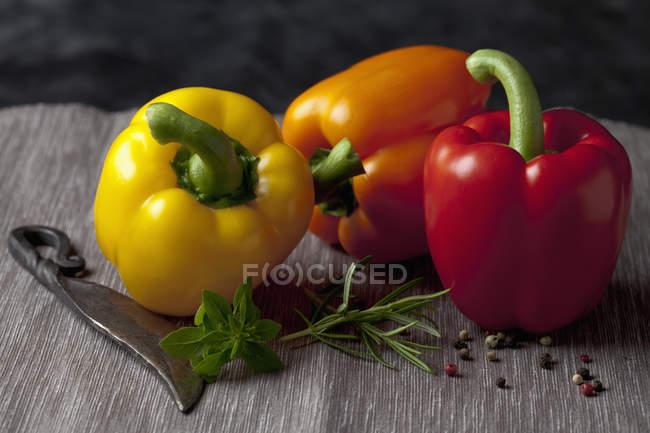 Оранжевый, желтый и красный перец паприка по дереву с ножом, травы и перца — стоковое фото
