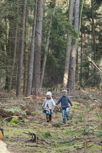 Брат и сестра в лесу видео