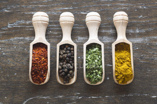 Scoops with spices, chilli powder, black pepper, dried chieves and curry — Stock Photo