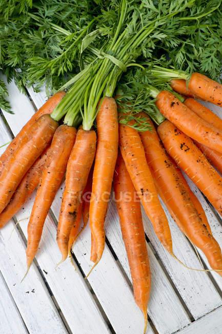 Racimos frescos de zanahorias con tallos en madera blanca - foto de stock
