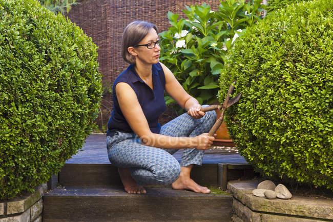 Woman cutting box tree in garden — Stock Photo