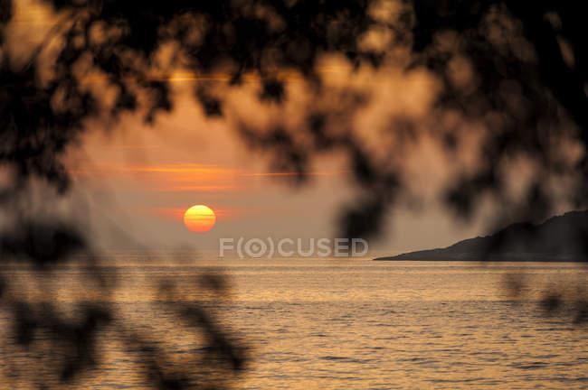 Kroatien, vrsar, Sonnenuntergang über dem Meer mit Bäumen — Stockfoto