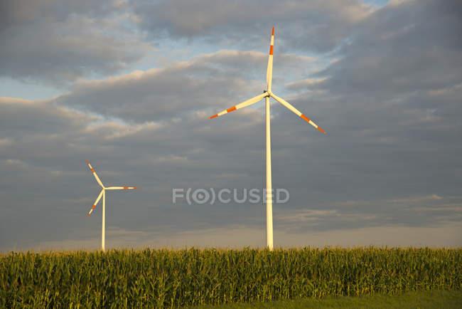 Германия, Баден-Вюртемберг, ветроэлектростанция Tomerdingen над травой — стоковое фото