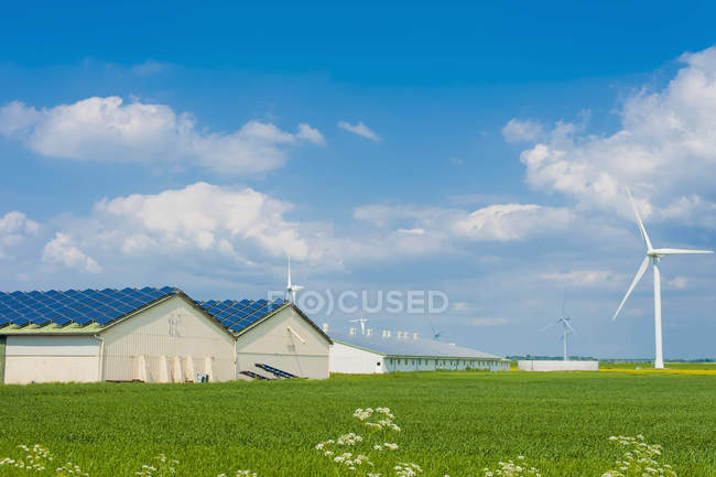 Germany, Schleswig-Holstein, View of solar panel on house roof — Stock Photo