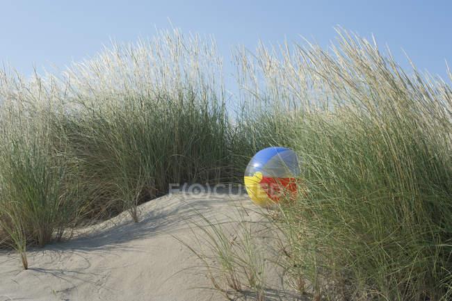 Італія, Адріатичного, пляжний м'яч на піщаній дюні з трави — стокове фото