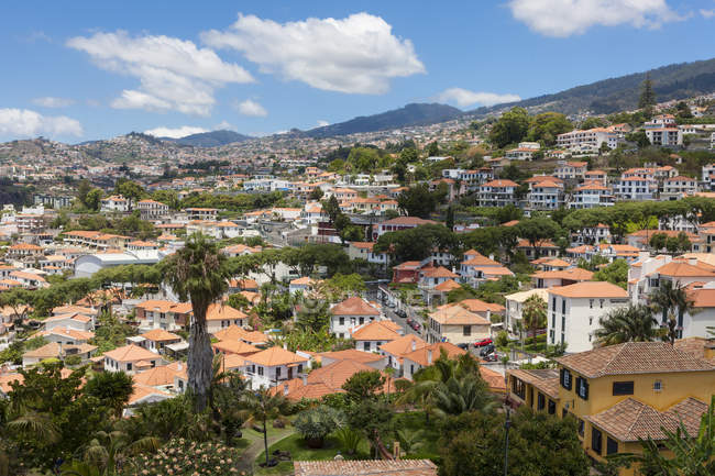 Portugal, Funchal, vista de casas em Madeira — Fotografia de Stock