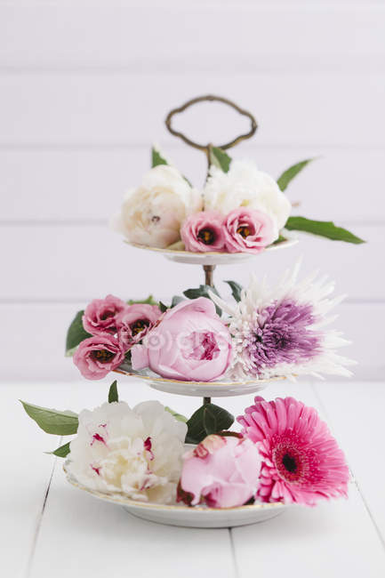 Summer flowers arranged on cake stand on white background — Stock Photo