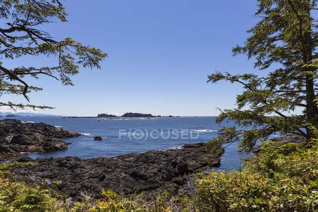 Canada, British Columbia, Vancouver Island, Pacific Rim National Park Reserve of Canada, costa rocciosa al Wild Pacific Trail — Foto stock