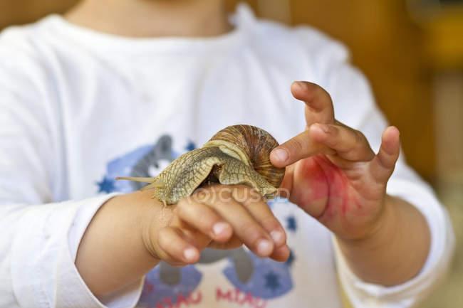 Escargot de Bourgogne sur la main de petite fille, vue — Photo de stock