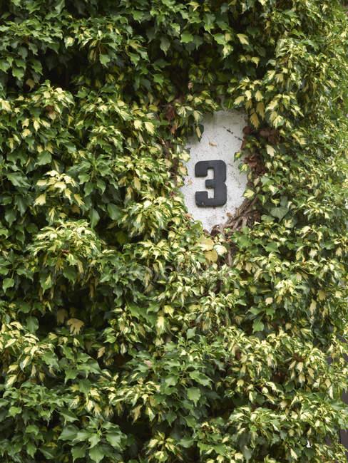 Parte de fachada cubierto con casa número 3 - foto de stock