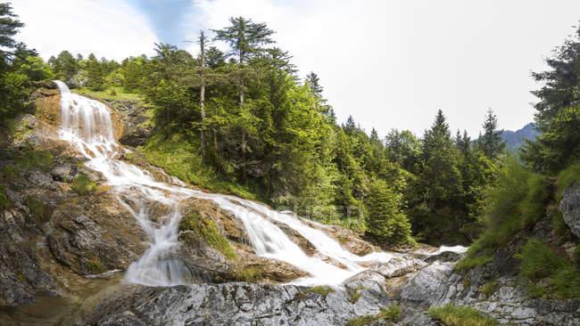 Германия, Бавария, Вид на водопад в зеленом лесу Ципфельсбах — стоковое фото