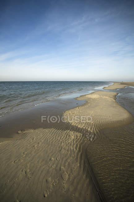 Holland Westenschouwen Costa Mare Del Nord Bassa Marea Sulla