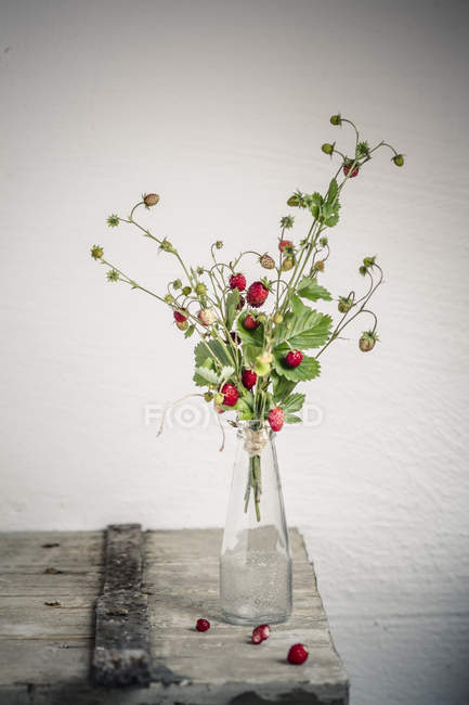Bouquet of wild strawberries in bottle on shabby wooden surface — Stock Photo