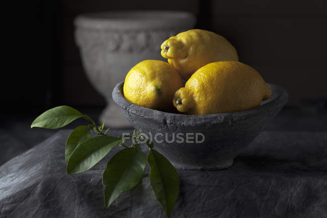 Bowl of lemons with leaves — Stock Photo