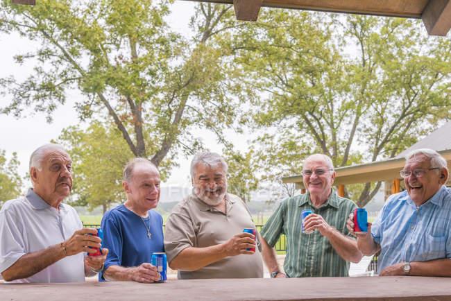 Sénior homens de pé no bar no parque e beber cerveja — Fotografia de Stock
