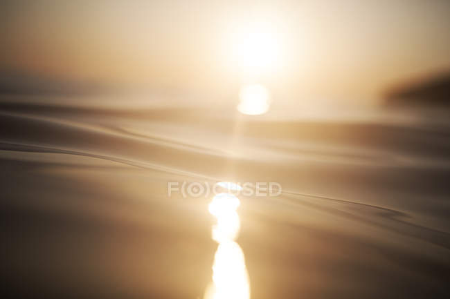 Sea waving surface texture at golden sunset — Stock Photo