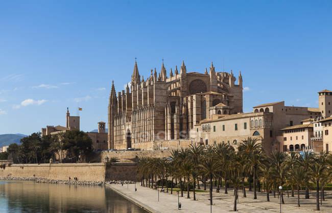 Испания, Майорка, вид Кафедральный собор — стоковое фото