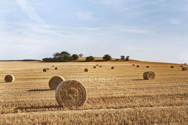 Germany, Bavaria, View of straw bales on field during daytime — Stock Photo