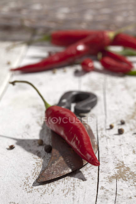 Red chili pepper on old knife on white wooden table with peppercorns — Stock Photo