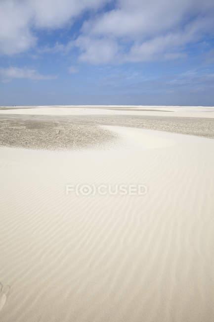 Німеччина, Нижня Саксонія, Східної Фризії, Borkum, Nordstrand, піщані дюни — стокове фото
