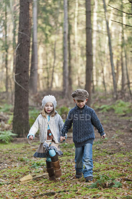 Brother and sister walking in woods holding hands — Stock Photo